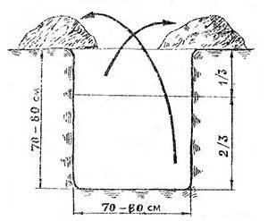 Посадочная яма для виноградного саженца. Плодородный слой сваливаем в одну сторону, а нижние слои в другую.