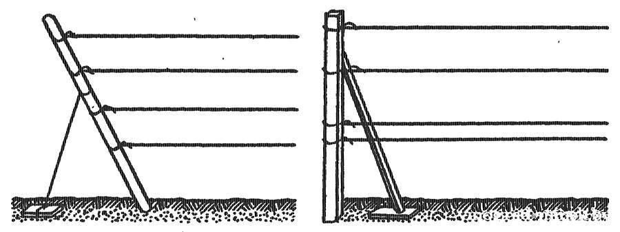 Одноплоскостная шпалера для винограда, способы установки якорных столбов.