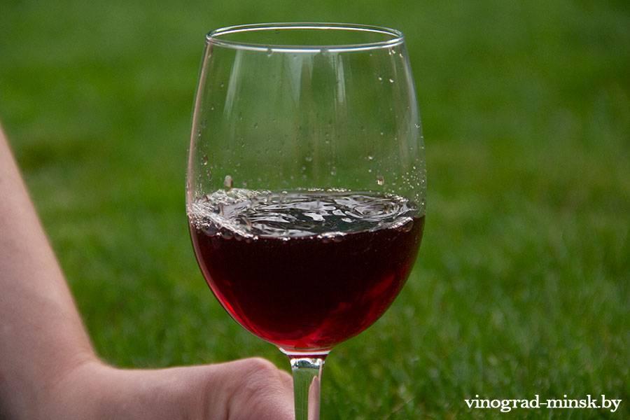 Домашнее и гаражное виноделие. В чем разница